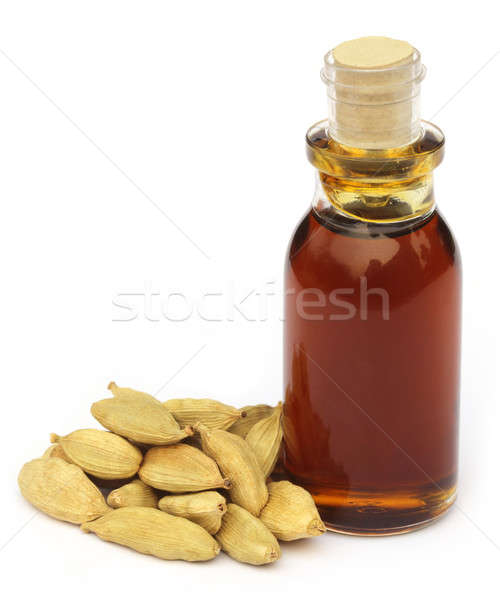 Cardamom seeds with oil Stock photo © bdspn