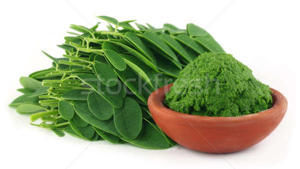 Moringa leaves with paste Stock photo © bdspn