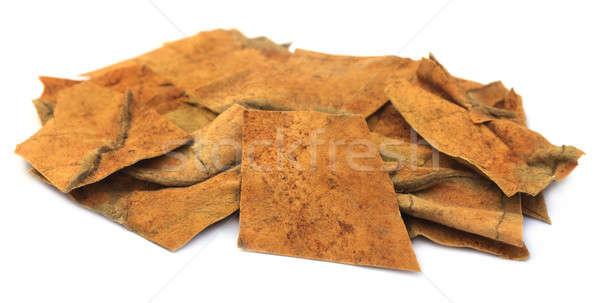 Essiccati tabacco foglie bianco natura stile di vita Foto d'archivio © bdspn