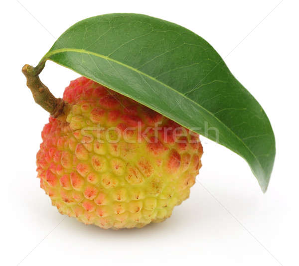 Hoja verde blanco frutas fondo verde rojo Foto stock © bdspn