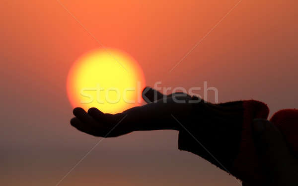 Catching sun at dawn Stock photo © bdspn