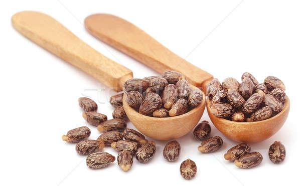 Castor beans in wooden spoon Stock photo © bdspn