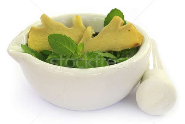 Medicinal herbs on mortar with pestle Stock photo © bdspn