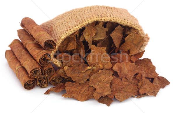 Száraz dohány levelek zsák fehér levél Stock fotó © bdspn