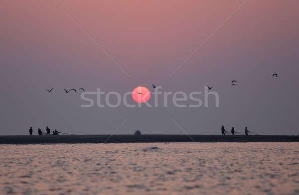 Nascer do sol voador aves praia água pôr do sol Foto stock © bdspn