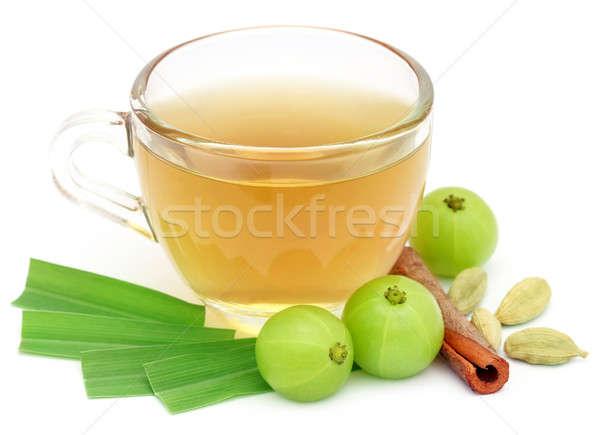 Chá medicinal copo diferente ervas branco vidro Foto stock © bdspn