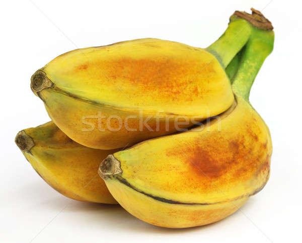 Selvatico banana sud-est asiatico alimentare natura frutta Foto d'archivio © bdspn