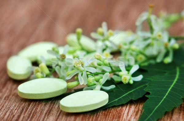 Pills made from medicinal neem Stock photo © bdspn