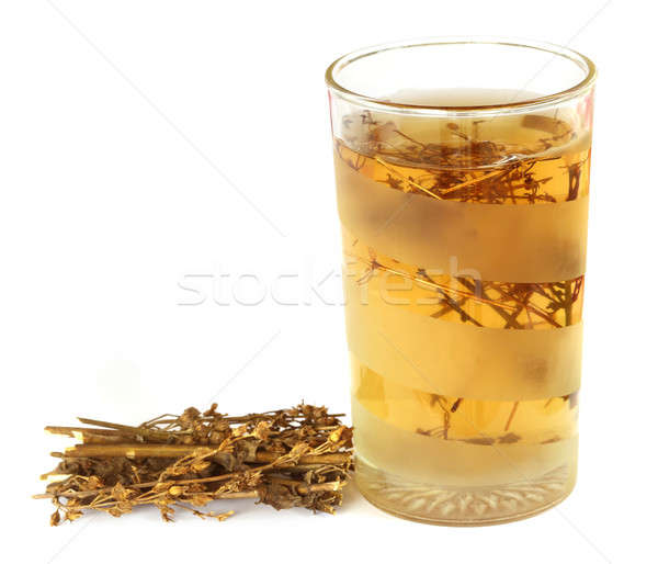 Ayurvedic medicinal Chirata with juice in glass Stock photo © bdspn