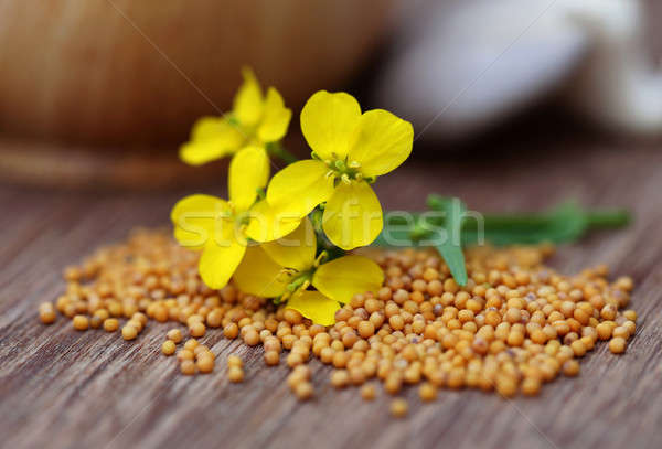 Mustard flowers with mushroom  Stock photo © bdspn