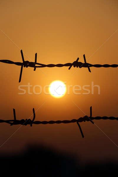 Zonsondergang achter hek prikkeldraad zon abstract Stockfoto © bdspn