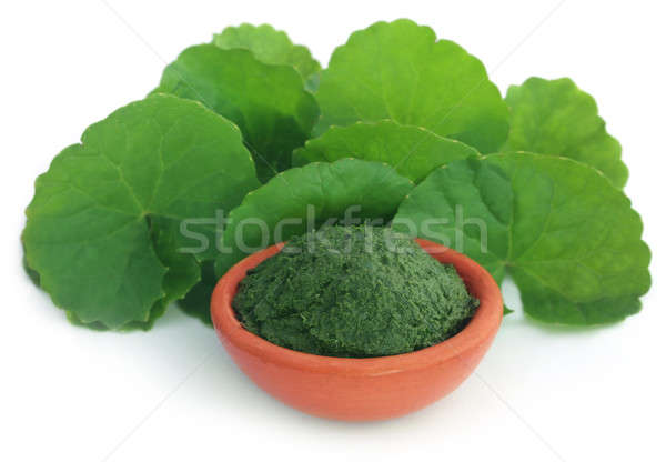 Stockfoto: Bladeren · vers · voedsel · blad · glas
