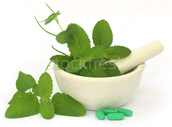 Medicinal herbs on mortar with pestle and pills Stock photo © bdspn