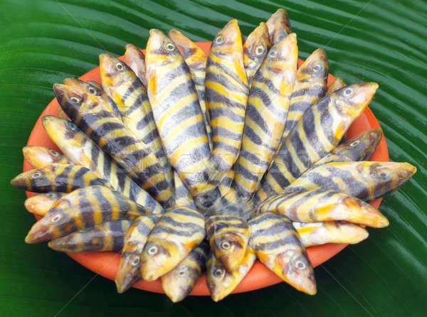 Pesce meridionale Asia alimentare fiume mangiare Foto d'archivio © bdspn