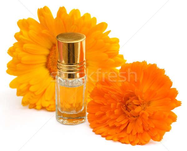 Primer plano esencia botella blanco fondo belleza Foto stock © bdspn