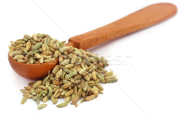 Fennel seeds Stock photo © bdspn