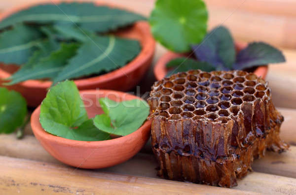 Medicinal herbs with honey comb Stock photo © bdspn