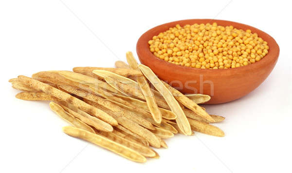 Golden Mustard with empty pods Stock photo © bdspn