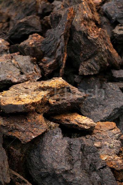 Soem bloks at peat field Stock photo © bdspn