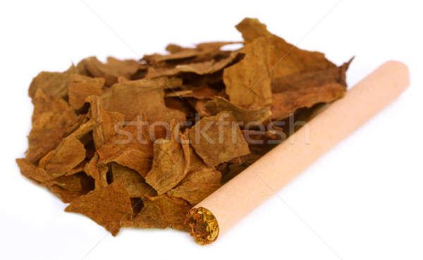 высушите табак листьев сигарету белый Сток-фото © bdspn