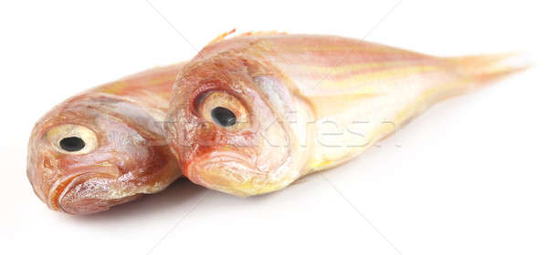 Poa fishes of South asia Stock photo © bdspn