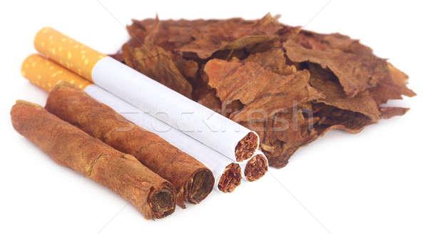 Drogen tabak bladeren sigaret witte blad Stockfoto © bdspn