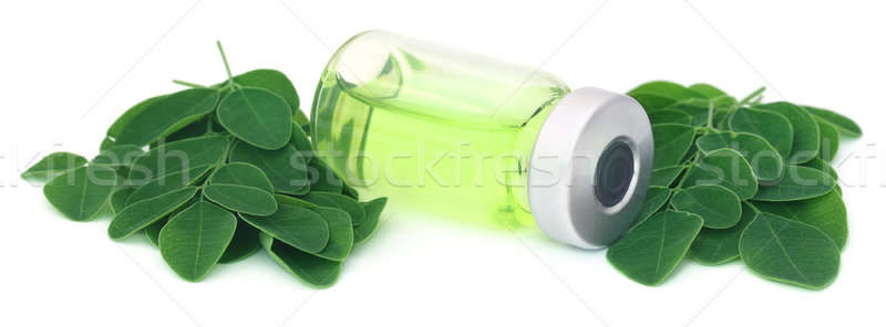 Moringa leaves with extract in a vial Stock photo © bdspn