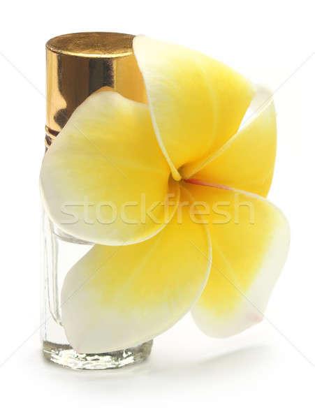 Tropicales perfume botella blanco planta hermosa Foto stock © bdspn