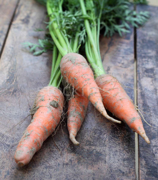 Some fresh carrots with leaves  Stock photo © bdspn