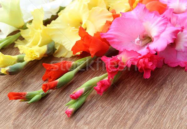 цветок розовый оранжевый желтый избирательный подход Сток-фото © bdspn