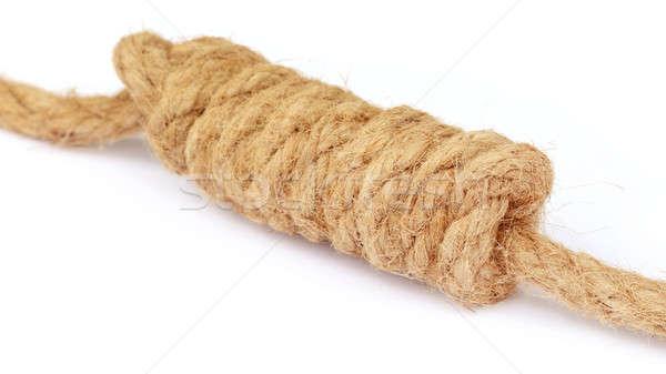 Nó velho corda branco textura espaço Foto stock © bdspn
