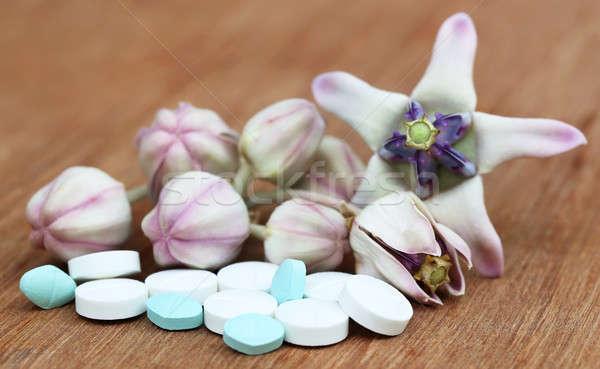 Medicinal Crown flower Stock photo © bdspn