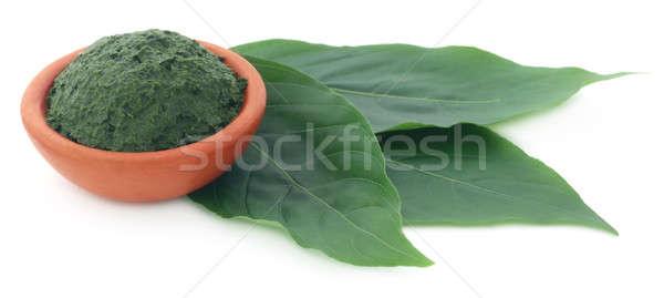 Mashed vitex Negundo or Medicinal Nishinda leaves  Stock photo © bdspn