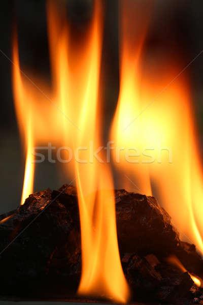 Yanan kömür alev ahşap turuncu gece Stok fotoğraf © bdspn