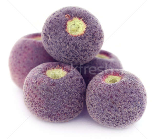 Grewia asiatica or Falsa fruits of Southeast Asia Stock photo © bdspn