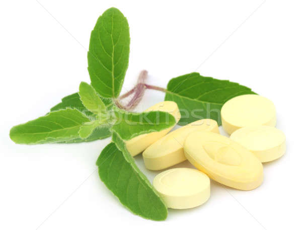 Tablets with medicinal holy basil Stock photo © bdspn