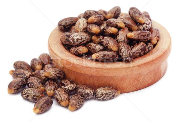 Castor beans in a wooden bowl Stock photo © bdspn