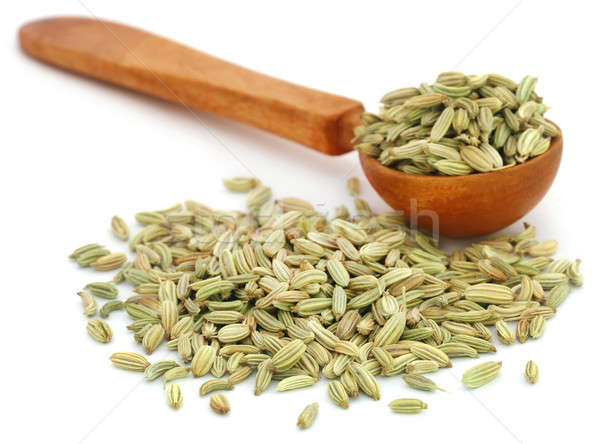 Fennel seeds in a wooden spoon Stock photo © bdspn
