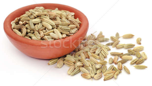 Fennel seeds Stock photo © bdspn