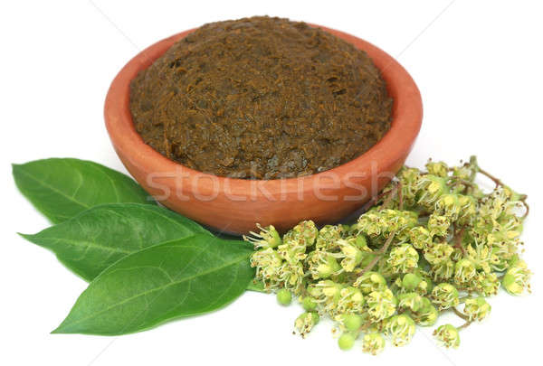 Ayurvedic henna leaves with flowers and paste Stock photo © bdspn