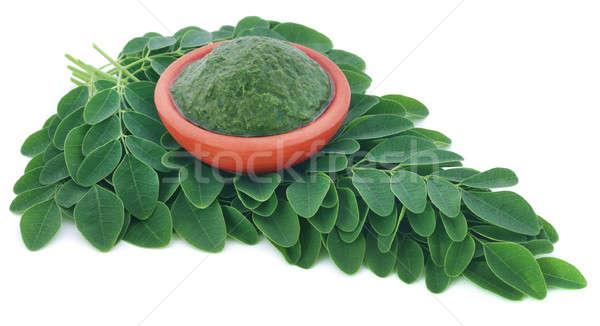 Foto d'archivio: Commestibile · foglie · terra · verde · vegetali · ceramica