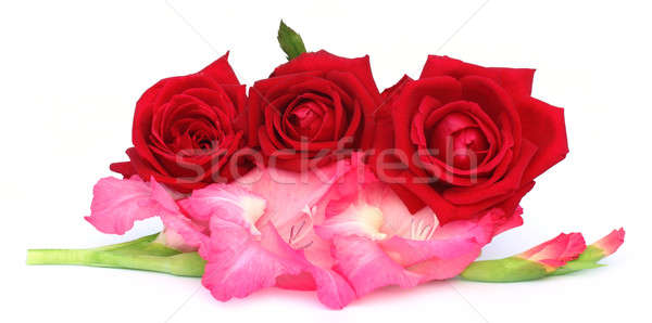 Bunch of gladiolus and red rose Stock photo © bdspn
