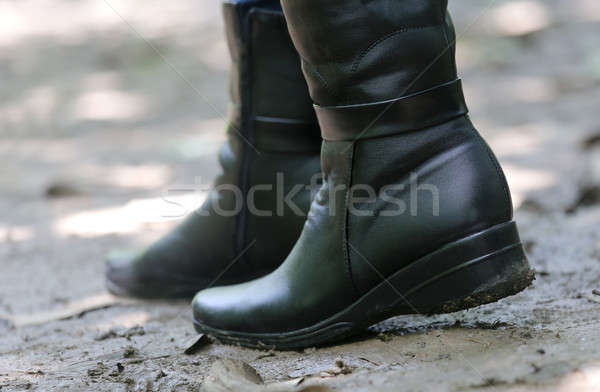 Ladys boots Stock photo © bdspn