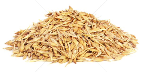 Fresh oats Stock photo © bdspn
