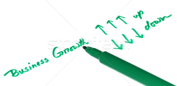 Business growth concept Stock photo © bdspn