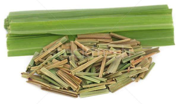 Lemongrass Stock photo © bdspn