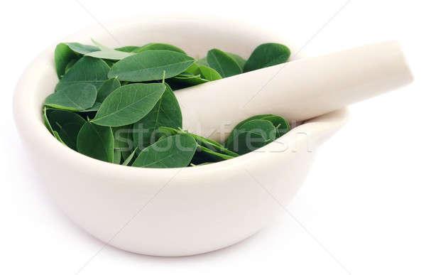 Comestível folhas natureza verde vegetal fresco Foto stock © bdspn