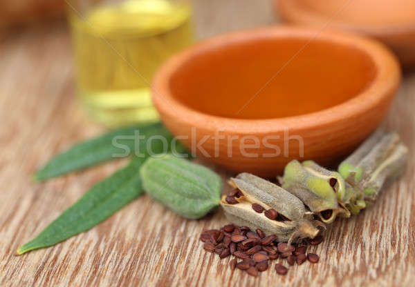 Sesame seeds with essential oil Stock photo © bdspn