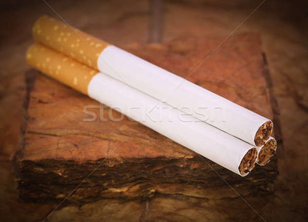 Dry tobacco leaves with filter cigarette Stock photo © bdspn