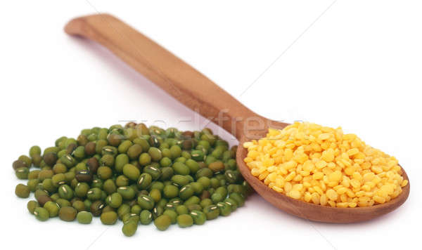 Mung bean in wooden spoon Stock photo © bdspn